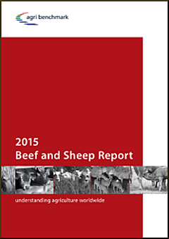 cover beef and sheep report 2015