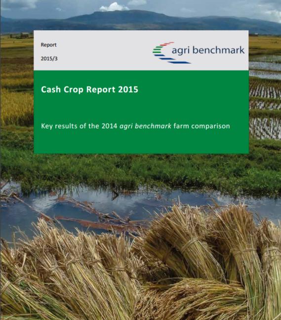 cash crop report 2015