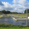 Danish trout farm